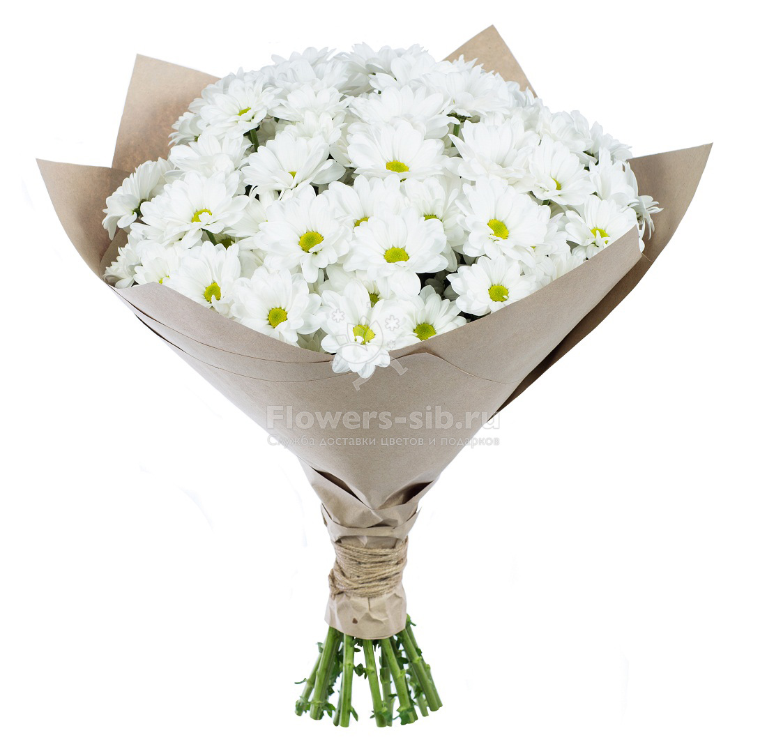 Цветов магазин цветов в твери пионы интернет магазин